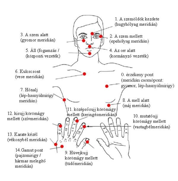 Akupunktúra 2