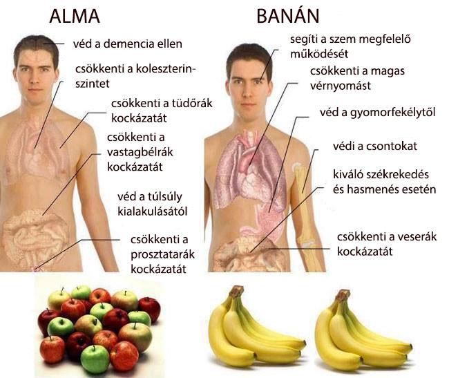 Miért érdemes almát és banánt fogyasztani? 1