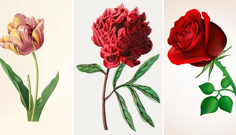 Válassz egy virágot: mindent megtudhatsz a személyiségedről, amiről eddig fogalmad sem volt 1