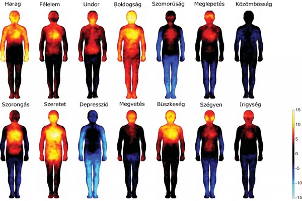 érzelem hőtérkép, érzelmek hőmérséklete