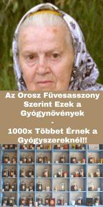 Az Orosz Füvesasszony Szerint Ezek a Gyógynövények 1000x Többet Érnek a Gyógyszereknél... 1