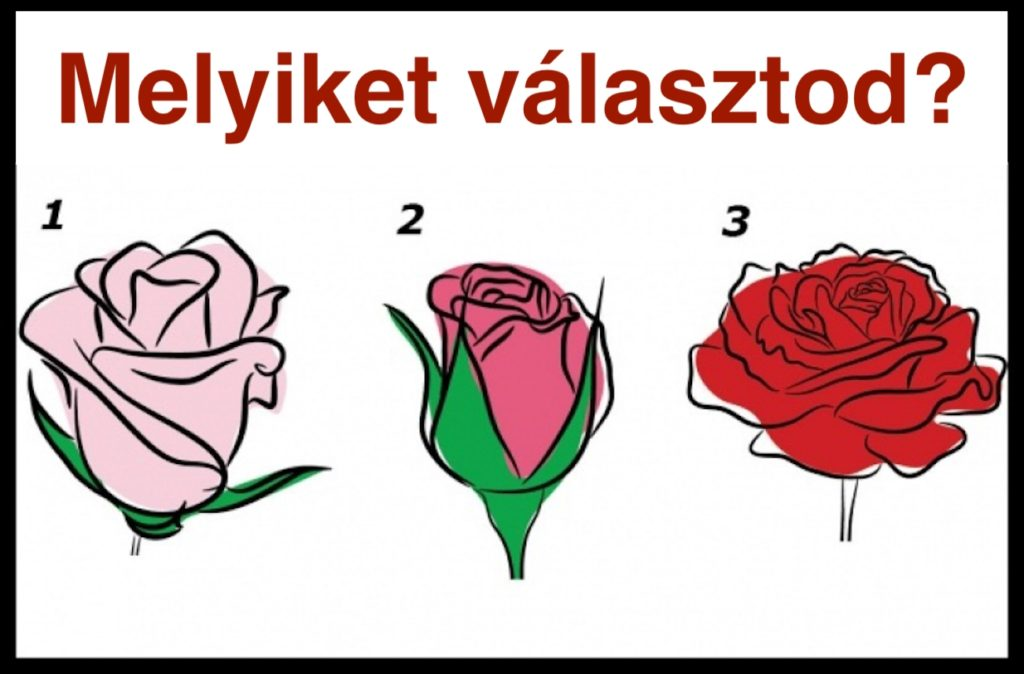 Ismerd Meg A Szívedet! Válassz Egy Rózsát És Fény Derül Belső Érzelmeidre! 1
