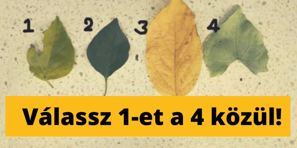 Válassz 1 falevelet a 4 közül - felfedi a rejtett tulajdonságaid! 1